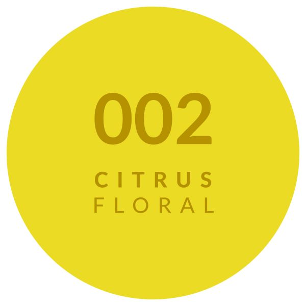 Perfume Citrus Floral 002
