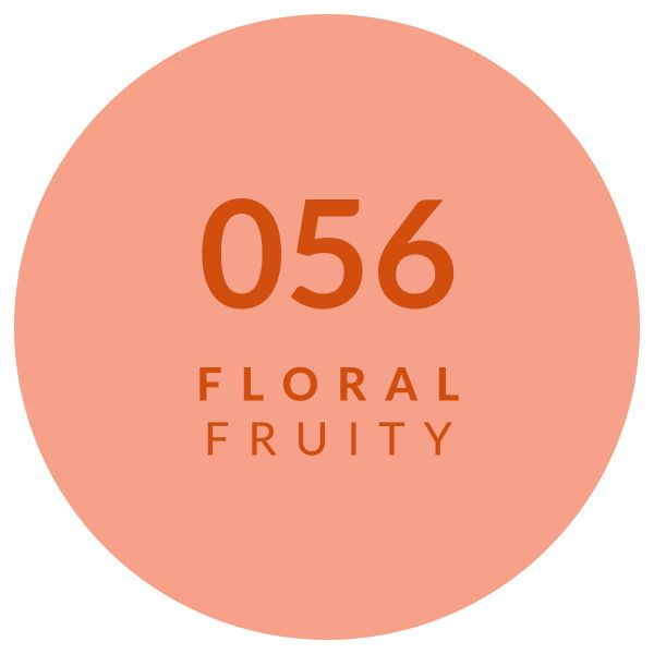 Perfume Floral Fruity 056