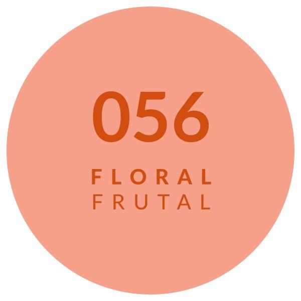 Perfume Floral Frutal 056