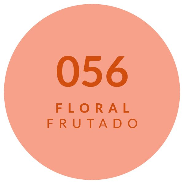 Perfume Floral Frutado 056