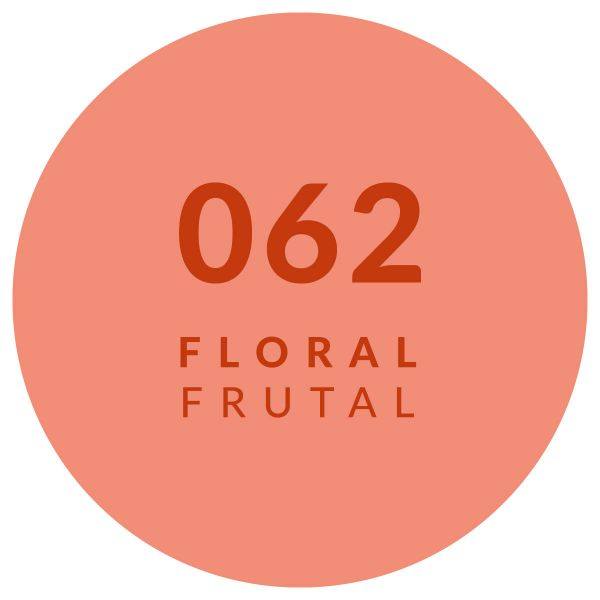 Floral Frutal 062