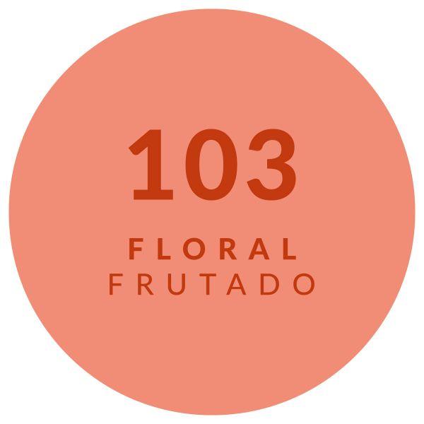 Floral Frutado 13