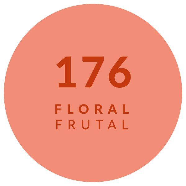 Floral Frutal 176