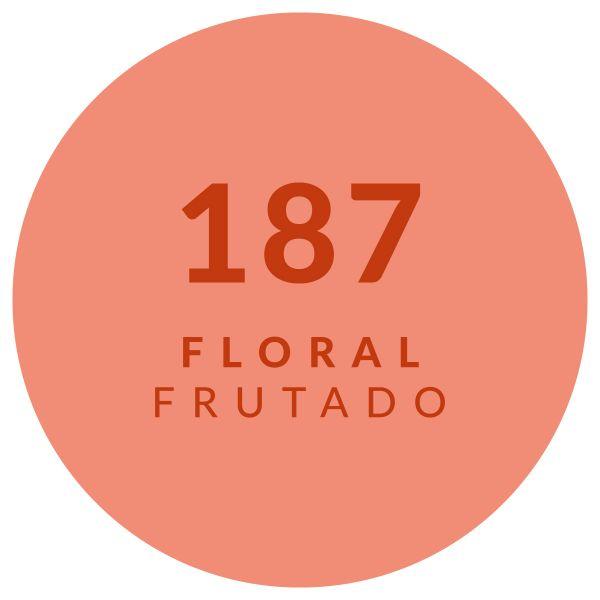 Floral Frutado 187