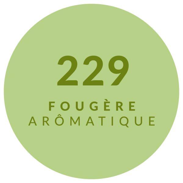 Herbacé Aromatique 229