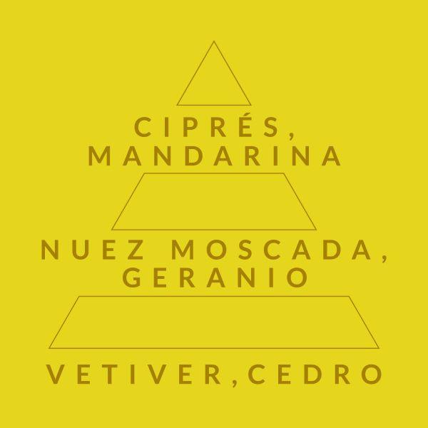 Cítrico Marino 209