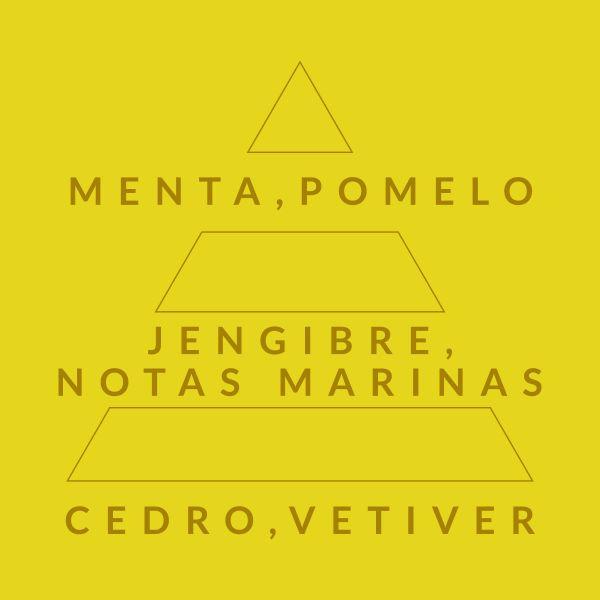 Cítrico Marino 257