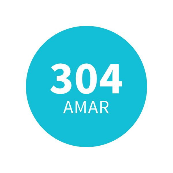 Amaderado Aromático 304