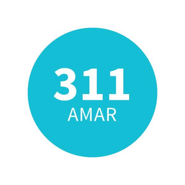 Amadeirado Aromático 311