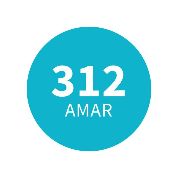 Amadeirado Aromático 312