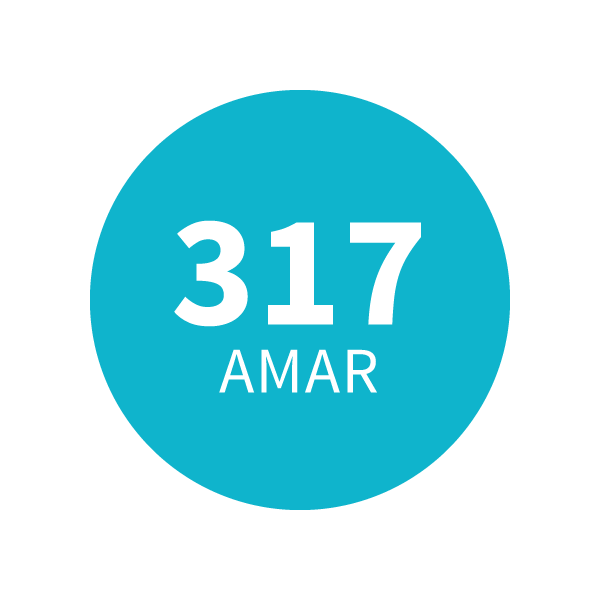 Amaderado Aromático 317